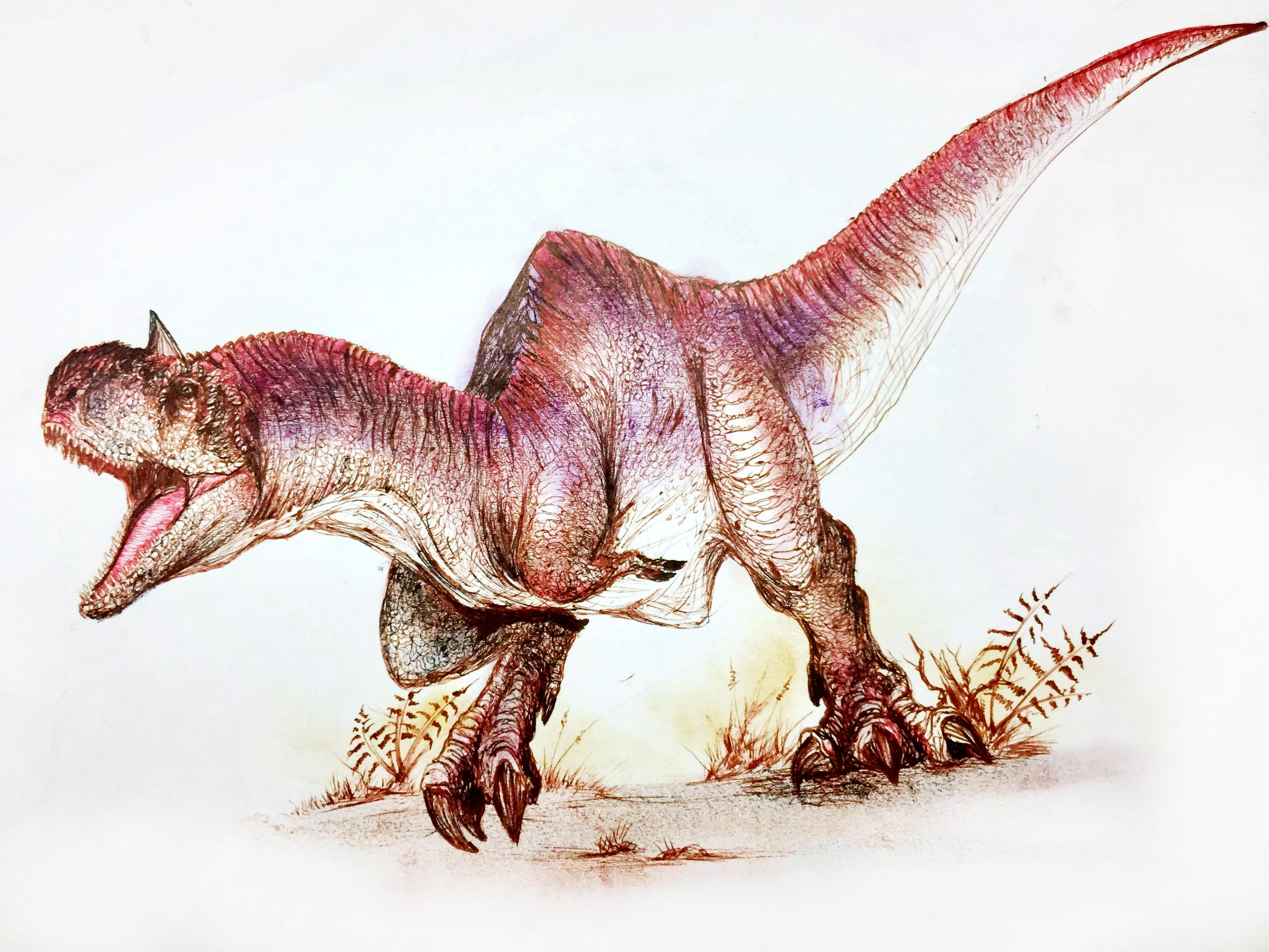 majunggasaurus