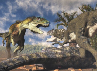 Allosaurus vs. Saurophaganax