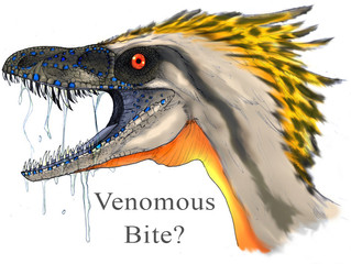 A DINOSAUR with a VENOMOUS bite?