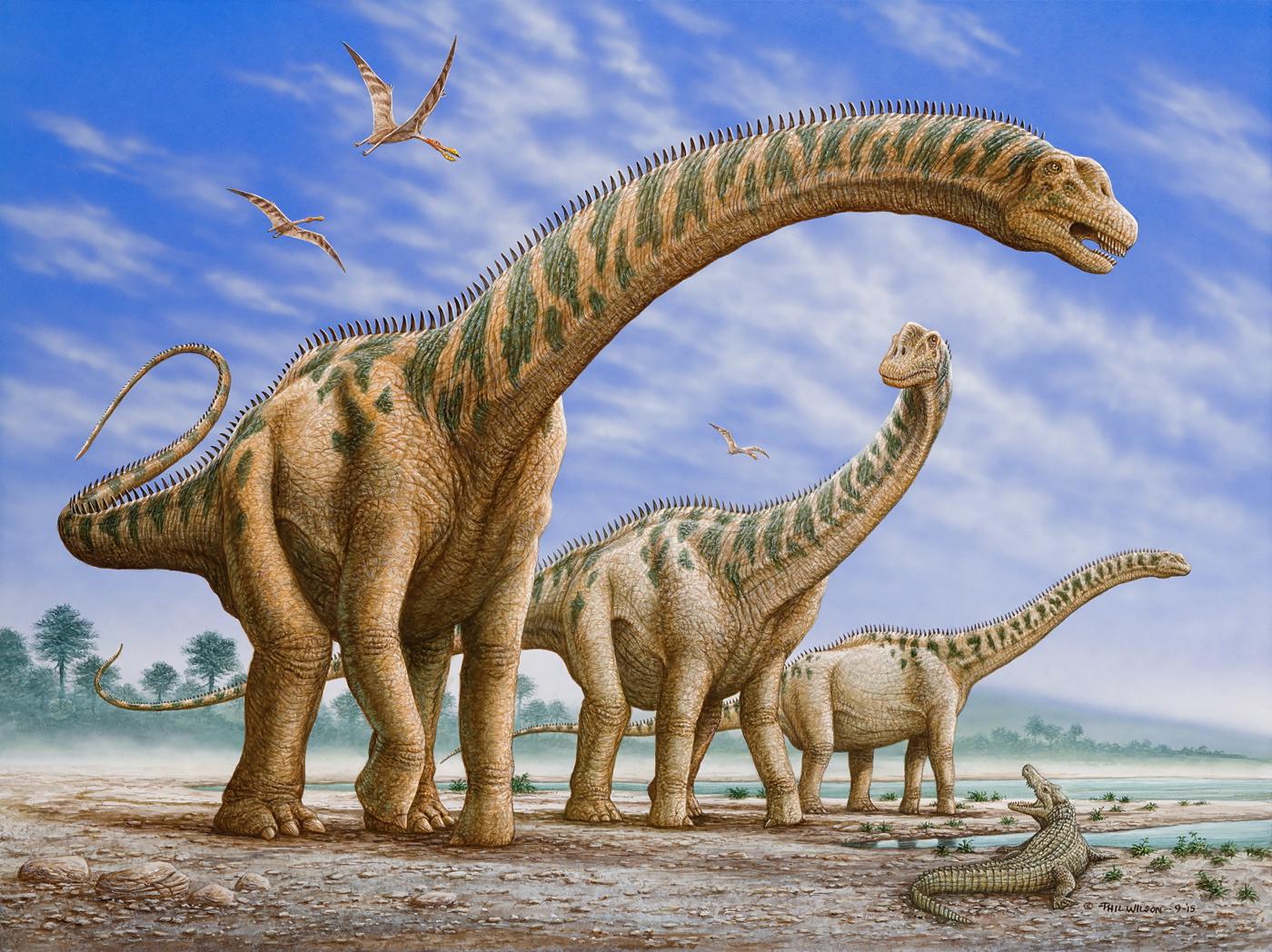 Argentinosaurus (s)