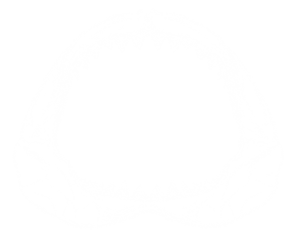 SharkStore_edited.png