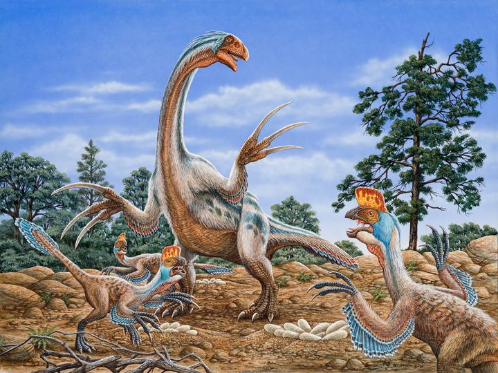 Therizinosaurus & Oviraptors