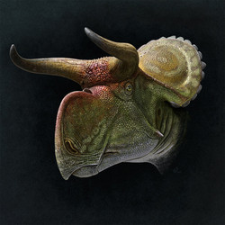 nasutoceratops__portrait__by_olorotitan-