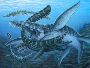 A Jurassic Ocean Assassin!