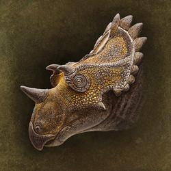 Regaliceratops_head02_2000