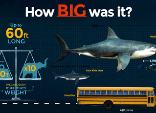 The Extinction of the giant shark from hell!