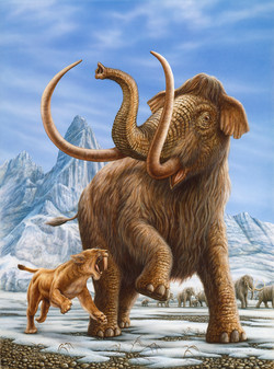 Mammoth _ Saber Tooth cat