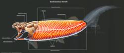 rushelle-kucala-dunkleosteusterrellimusc