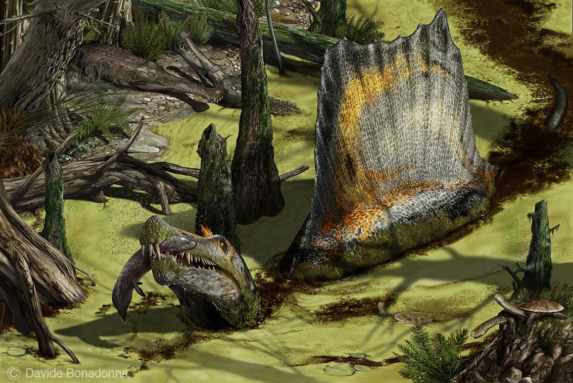 20-Spinosaurus-swamp