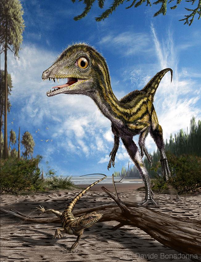 04-Scipionyx-and-Eichstaettisaurus