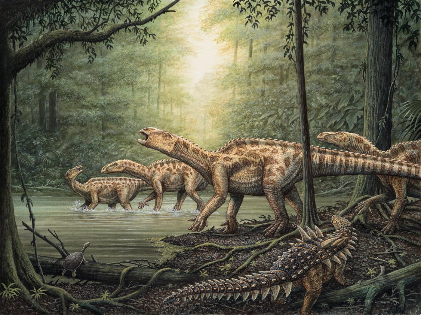 Iguanodon _ Polacanthus