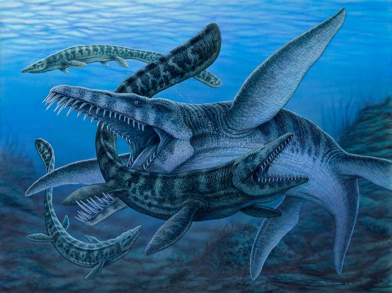 Liopleurodon - Mosasaurs