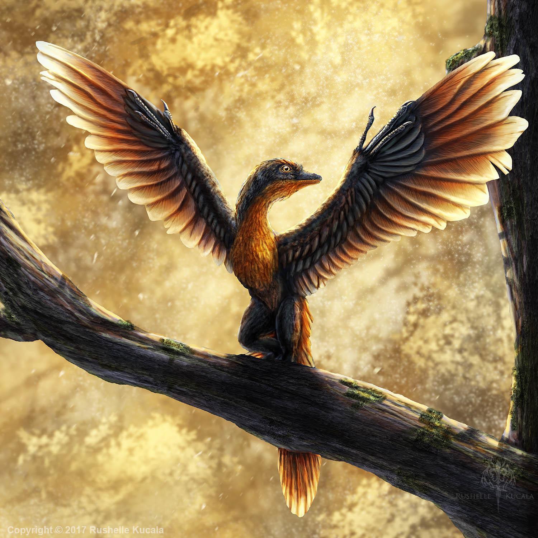 rushelle-kucala-archaeopteryxlithographi