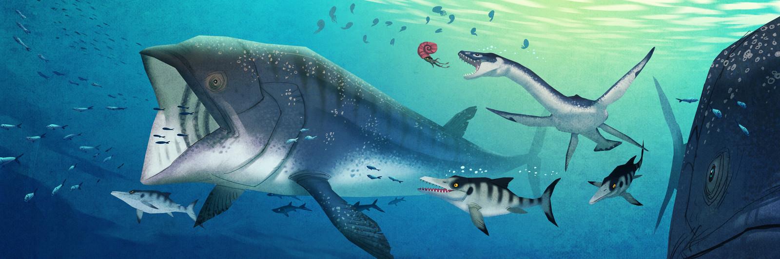johan-egerkrans-mesozoiska-havet