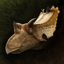utahceratops_gettyi_by_olorotitan-dbzxna