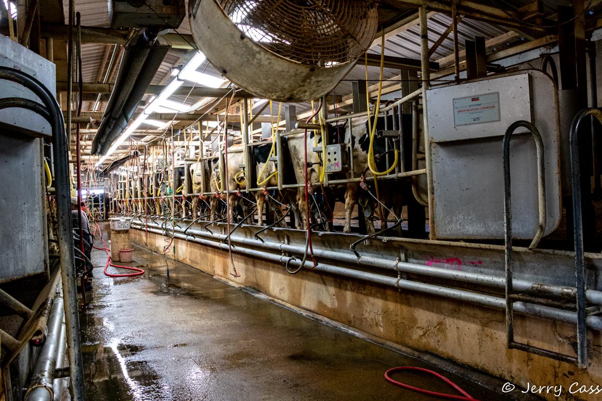 Milk Barn.jpg