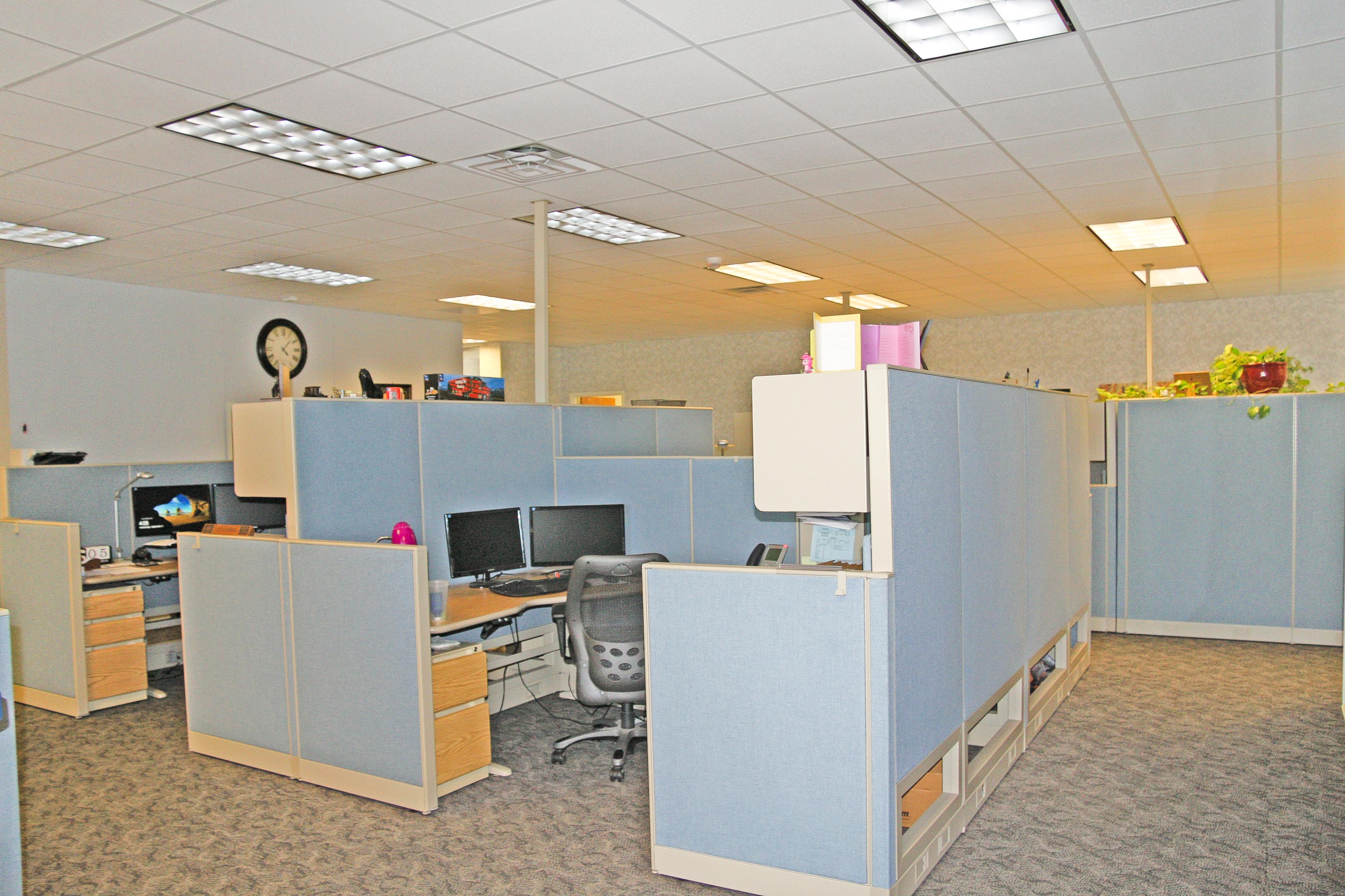 cubicle 1.jpg
