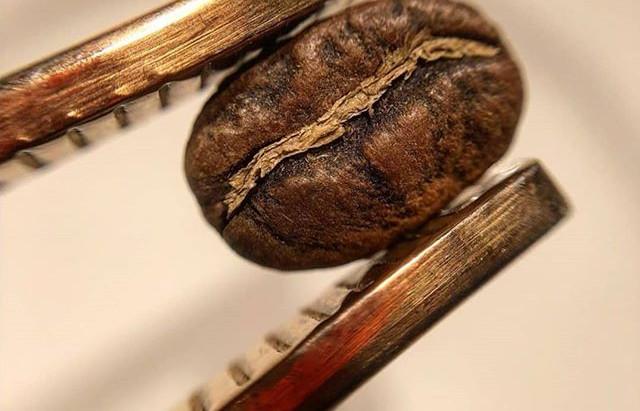 Distribuzione automatica di caffè: 5 valori
