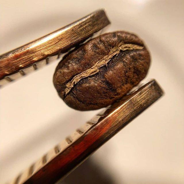 distribuzione automatica di caffè in Toscana