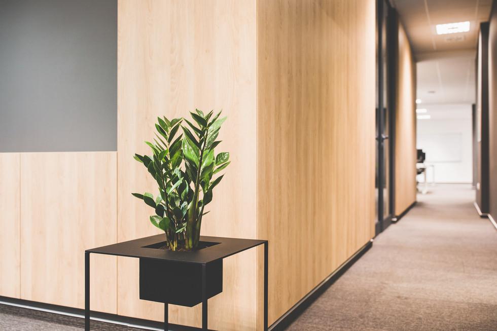 DAR612-Sofa-office-111.jpg