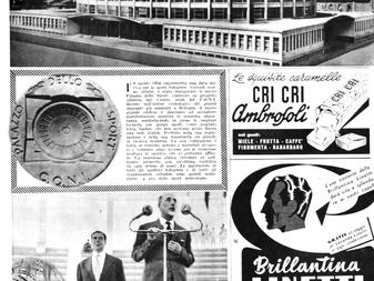 """60 ANNI DI PALASPORT.  PalaDozza - La""""cattedrale"""" del basket Italiano"""