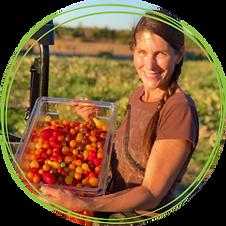 farm-farmer-tomatoes.png