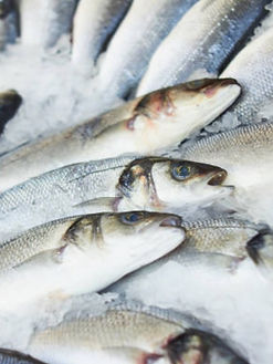 Desinfektion i fødevareindustri. Fiskeindustri desinfektion.