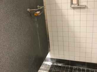 Custom Shower Drain