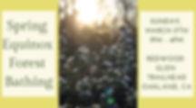 Spring Equinox v3.jpg