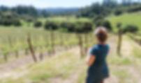 Wine Tasting Forest Bathing.jpg