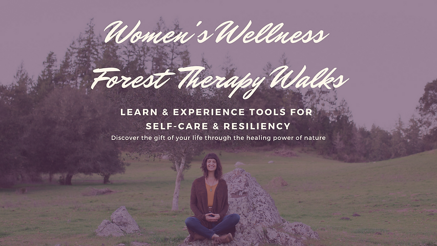 Women's Wellness Forest Therapy Walks.png