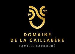 Logo Domaine.JPG