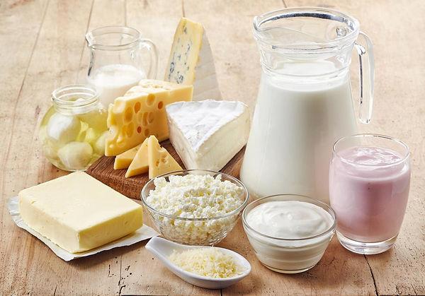 calcio leite derivados osteoporose OSTI curitiba