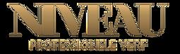 Verf van Niveau Logo.png