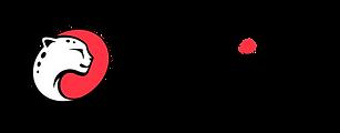 Logo_playtika.png