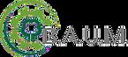 Baum-ev-logo.png