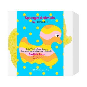 Sponge Animals