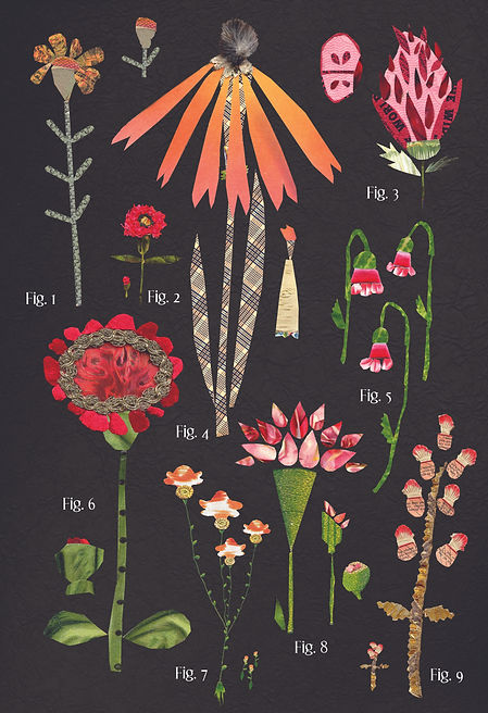 botanical no.1 red variations.jpeg