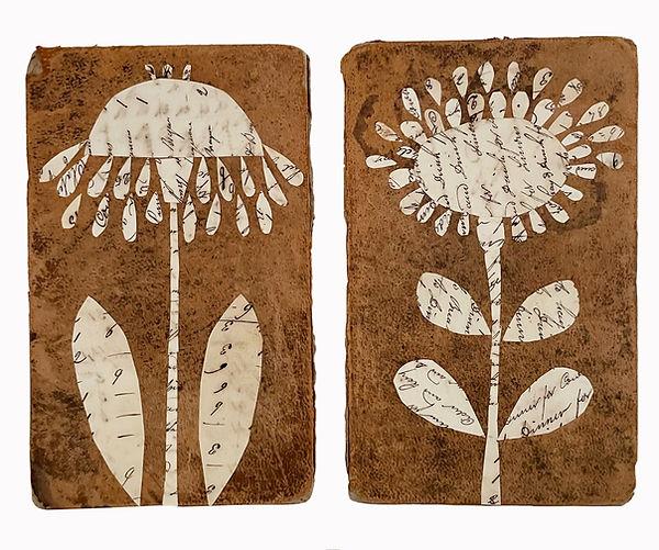 botanicals 20 and 21.jpg