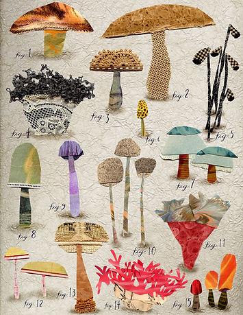 mushrooms_ susnfarrington_hires.jpg