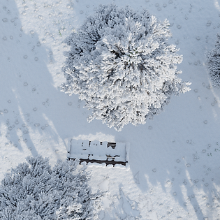 Snow Blender Bench.png