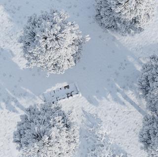 SNOW SCENE TOP 2