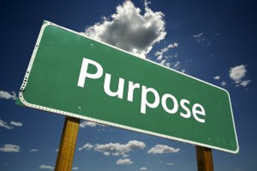 finding-the-purpose-of-life
