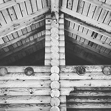 Log house project progress #runningproject #log_home #log #loghome  #loghouse #wood #w