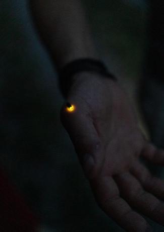 Nachtwanderung Ettlingen (6).jpg