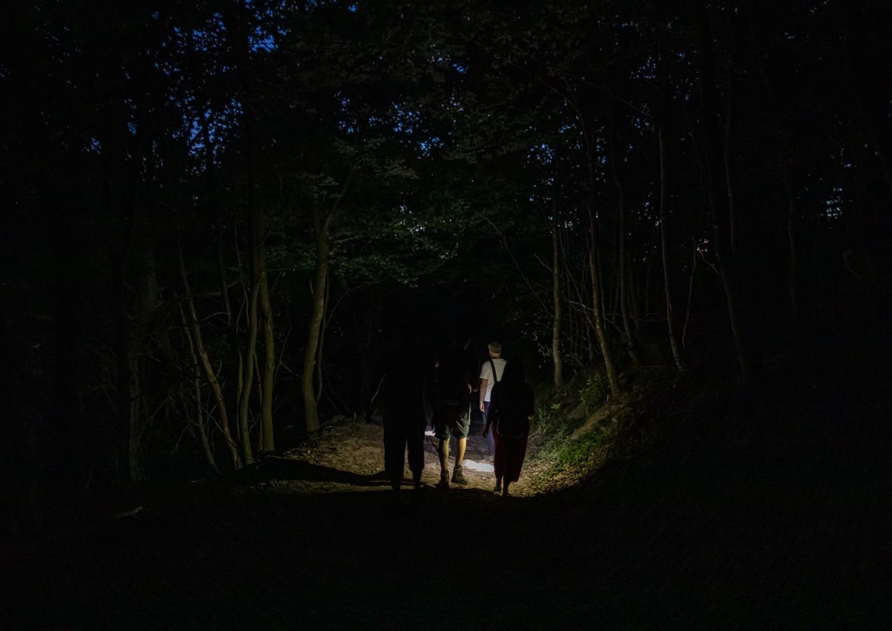 Nachtwanderung Ettlingen (5).jpg
