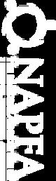 NAPFA-Final-Logo-new---white.png