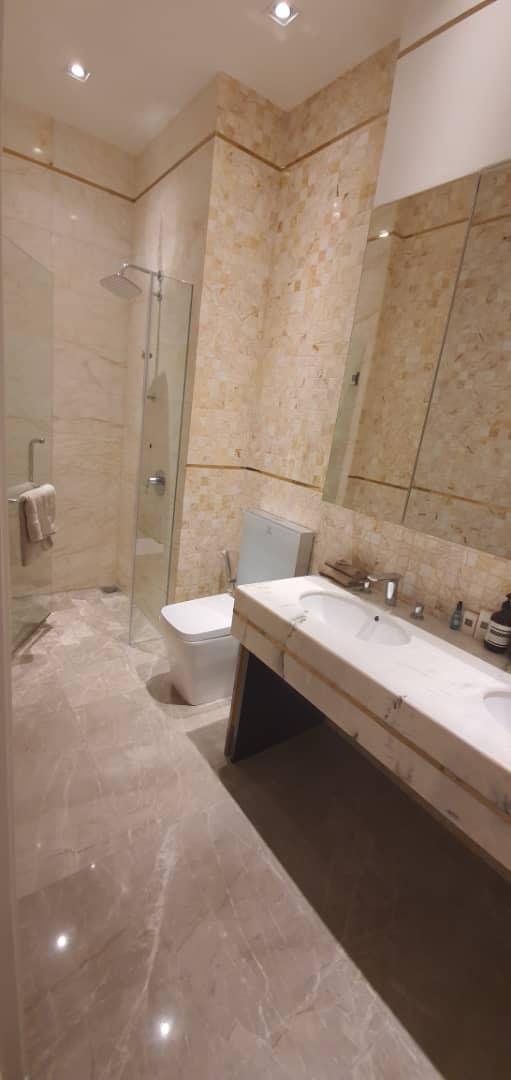 Paltinum- Face- II- Bathroom
