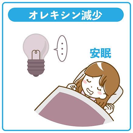 オレキシン減少→安眠