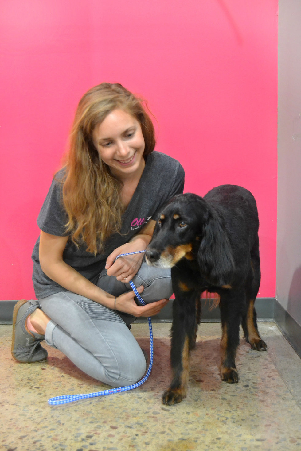 Female groomer kneeling next toblac dog with pink background